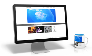 siteoptimization